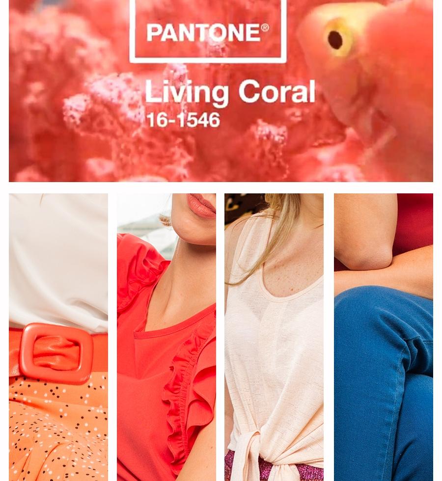 Cor Pantone